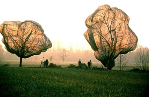 Christo Javacheff - Árboles (1998) - La imagen muestra dos árboles que aparecen envueltos en telas muy finas, casi transparentes a través de las cuales podemos apreciar las ramas y algunas hojas. Pulse para ampliar.
