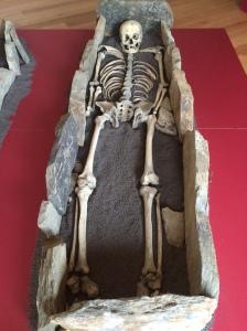 La imagen muestra la recosntrucción de un enterramiento medieval consistente en un espacio rectangular acotado por una serie de losas de piedra hincadas verticalmente en el suelo. Dentro se sitúa un esqueleto acostado boca arriba. El enterramiento estaría cubierto por una gran losa de piedra que no se ve en la exposición museística de los restos. Pulse para ampliar.